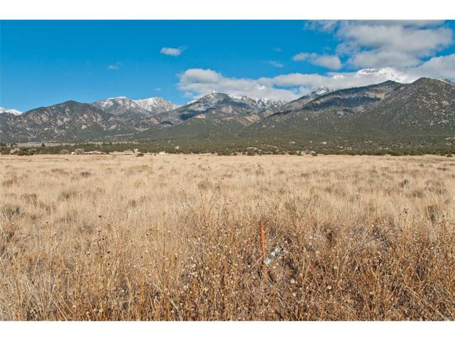 1595C Timberlane Trail, Crestone, CO 81131 (#1686812) :: Bring Home Denver