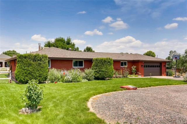9931 Ammons Circle, Westminster, CO 80021 (#1688016) :: My Home Team