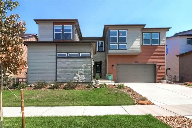 9852 Geneva Creek Lane, Littleton, CO 80125 (#1688379) :: The HomeSmiths Team - Keller Williams