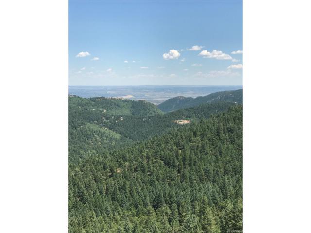 18614 Ute Vista Trail, Morrison, CO 80465 (MLS #1691256) :: 8z Real Estate