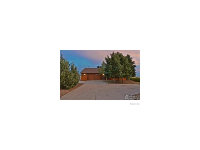1338 Rue De Trust, Erie, CO 80516 (MLS #1697417) :: 8z Real Estate