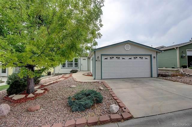 7755 Black Bear Point, Colorado Springs, CO 80922 (#1697981) :: Colorado Home Finder Realty