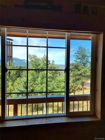 26381 Thompson Drive, Conifer, CO 80433 (MLS #1700471) :: Bliss Realty Group