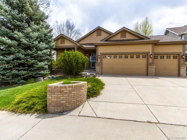 1214 Thatch Circle, Castle Rock, CO 80109 (#1703094) :: The DeGrood Team