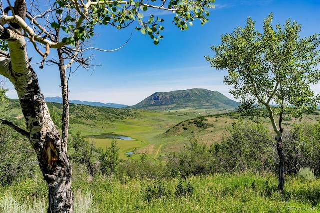 39125 Thompson Lane, Steamboat Springs, CO 80487 (MLS #1703908) :: 8z Real Estate