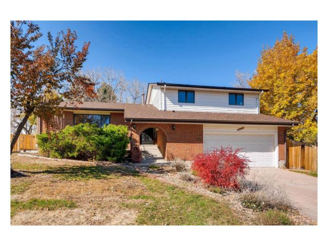 13479 Virgo Court, Littleton, CO 80124 (#1709047) :: Structure CO Group