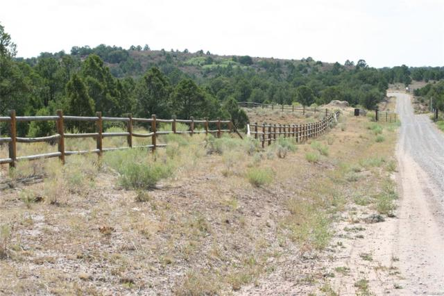 Lot 1 Elk Reserve Road, Glade Park, CO 81523 (MLS #1714106) :: 8z Real Estate
