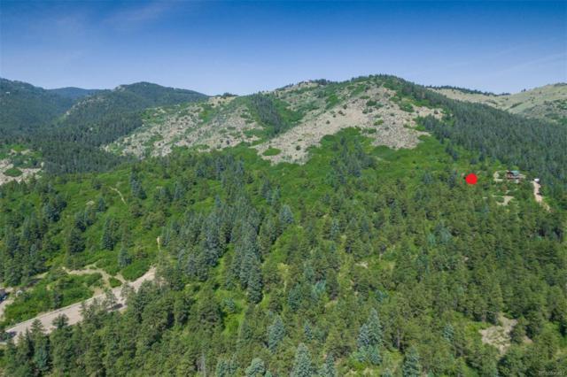 9147 S Deer Creek Canyon Road, Littleton, CO 80123 (#1715627) :: Wisdom Real Estate