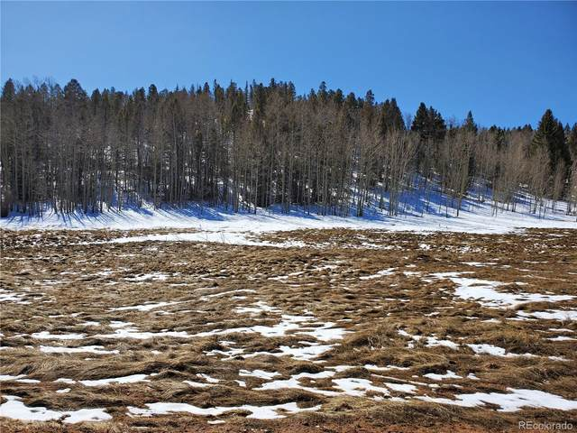 386 Hidden Valley Drive, Florissant, CO 80816 (#1717756) :: The Gilbert Group