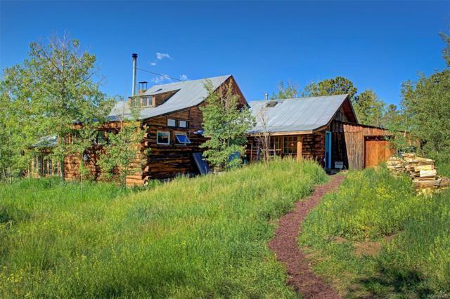 190 Mule Deer Trail, Idaho Springs, CO 80452 (MLS #1718289) :: 8z Real Estate