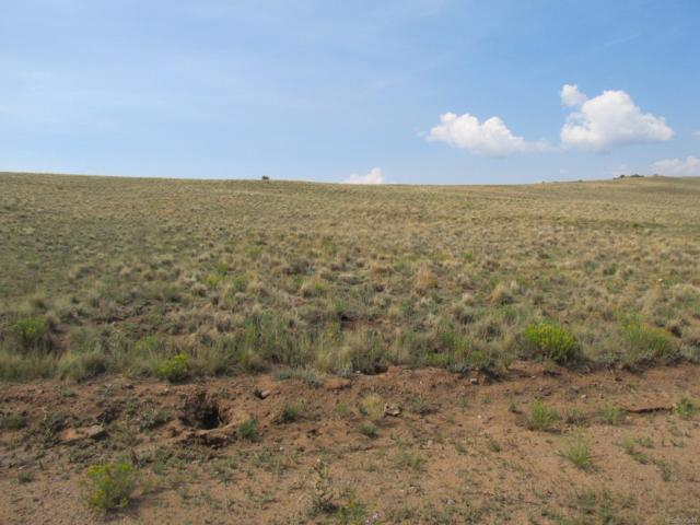 Athapascan Road, Hartsel, CO 80449 (#1720772) :: Structure CO Group