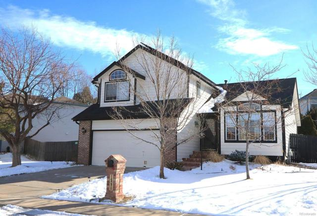 1590 S Pitkin Circle, Aurora, CO 80017 (#1721304) :: The City and Mountains Group
