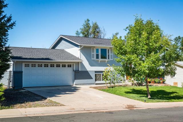 13483 Delphi Drive, Littleton, CO 80124 (#1725982) :: The Galo Garrido Group