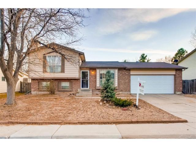 8826 W Elmhurst Avenue, Littleton, CO 80128 (MLS #1726278) :: 8z Real Estate