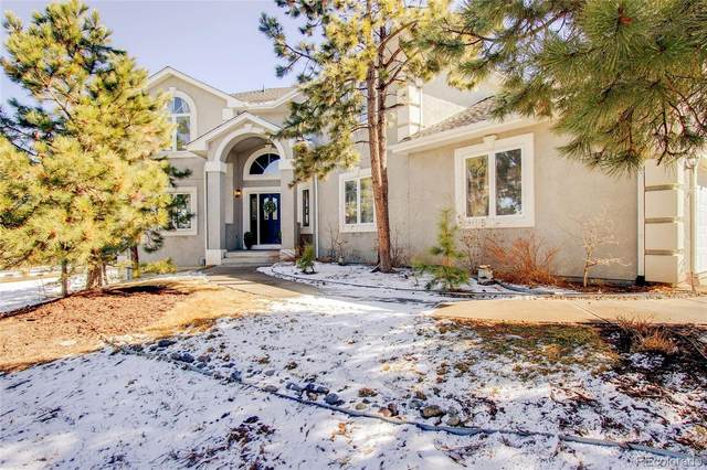 19155 Pagentry Place, Monument, CO 80132 (MLS #1728670) :: 8z Real Estate