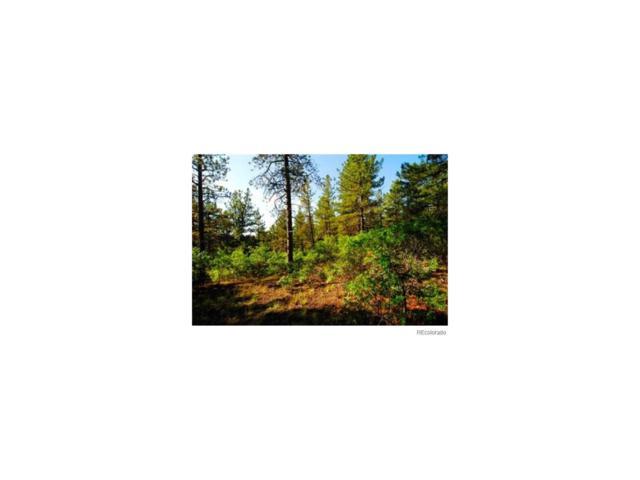 940 Cerro Place, Larkspur, CO 80118 (#1731525) :: Hometrackr Denver
