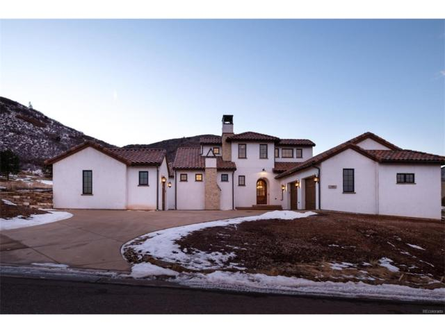 7901 Galileo Way, Littleton, CO 80125 (#1742368) :: Structure CO Group