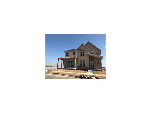 9003 E 61st Place, Denver, CO 80238 (#1744438) :: Wisdom Real Estate
