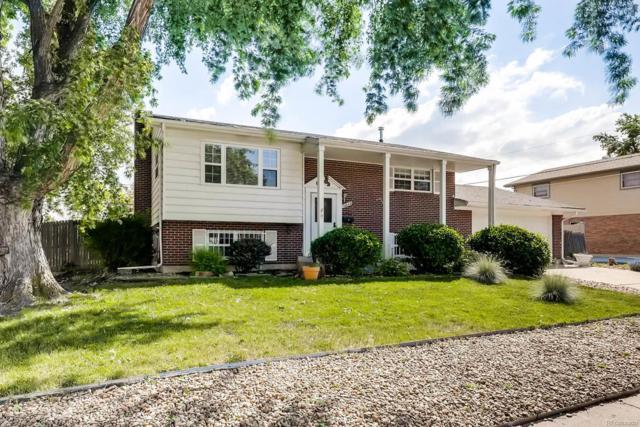 10849 Patterson Court, Northglenn, CO 80234 (MLS #1748038) :: 8z Real Estate
