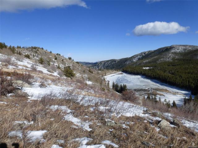 2300 Lake Eldora Ski Road, Nederland, CO 80466 (MLS #1748711) :: 8z Real Estate