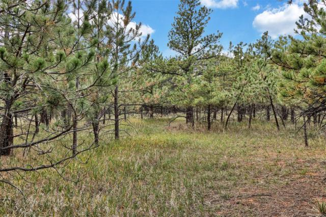 Lot 4 Stone View Road, Monument, CO 80132 (#1749729) :: The HomeSmiths Team - Keller Williams