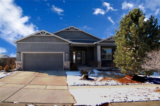 7906 Mount Hayden Drive, Colorado Springs, CO 80924 (MLS #1751427) :: 8z Real Estate