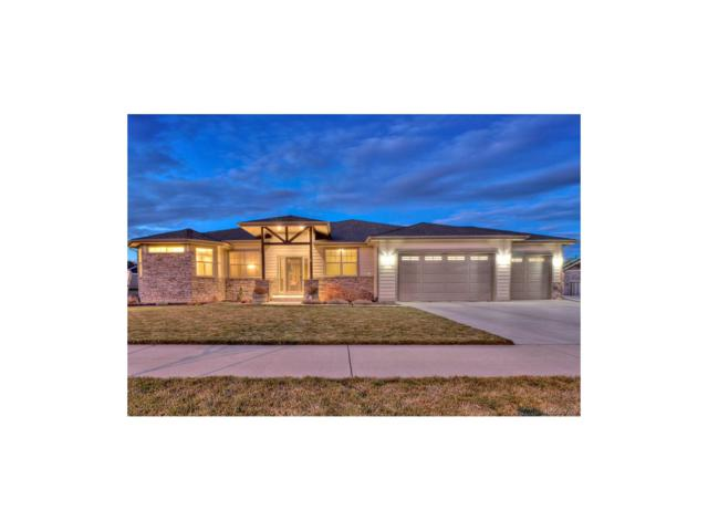 7801 Skyview Street, Greeley, CO 80634 (MLS #1754963) :: 8z Real Estate
