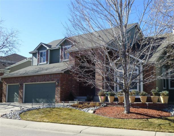 384 Winterthur Way, Highlands Ranch, CO 80129 (#1756354) :: The Peak Properties Group