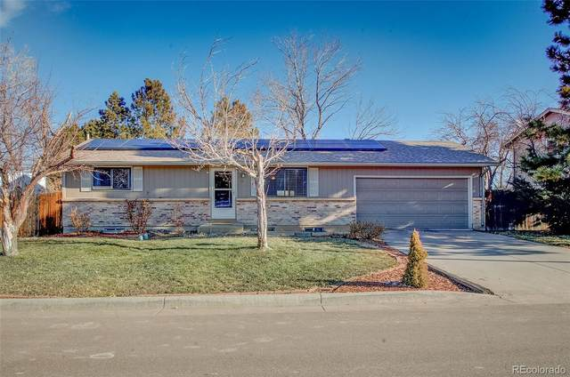 283 Maximus Drive, Littleton, CO 80124 (MLS #1760142) :: The Sam Biller Home Team