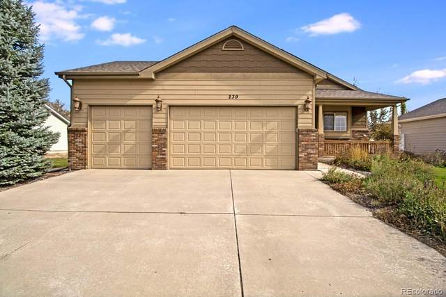 239 Hawthorne Avenue, Johnstown, CO 80534 (#1760711) :: The DeGrood Team