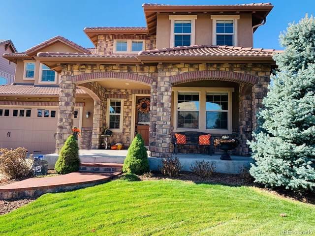 10687 Sundial Rim Road, Highlands Ranch, CO 80126 (#1763512) :: Kimberly Austin Properties