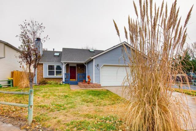 8384 Prairie Clover Way, Parker, CO 80134 (#1770147) :: My Home Team