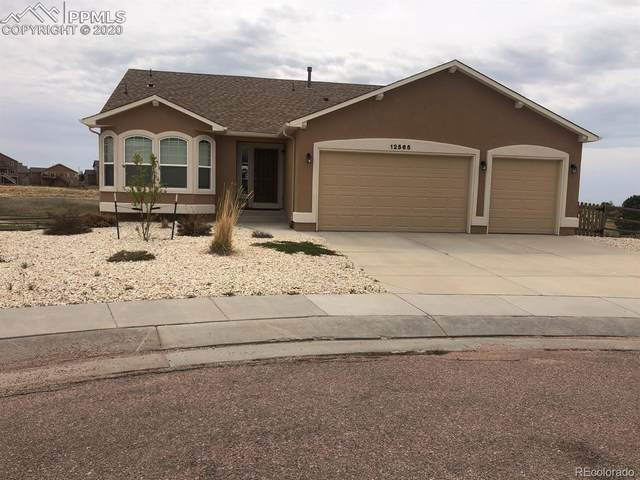 12565 Angelina Drive, Peyton, CO 80831 (#1771570) :: The DeGrood Team