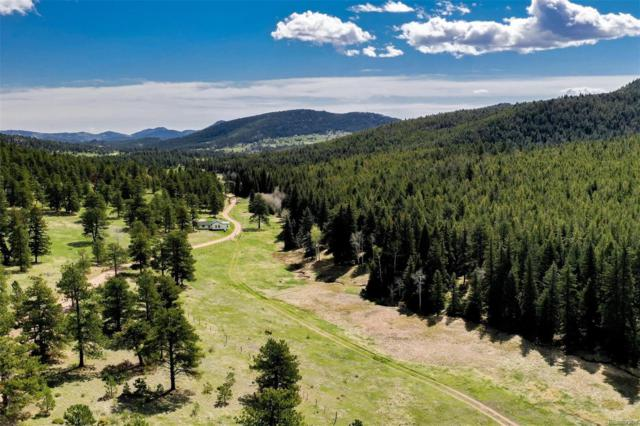 34040 Buffalo Park Road, Evergreen, CO 80439 (#1776750) :: Wisdom Real Estate