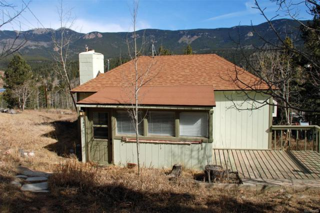 347 Lakeview Road, Bailey, CO 80421 (#1778563) :: The Galo Garrido Group