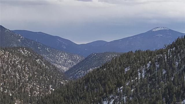 000 Hummingbird Trail, Idaho Springs, CO 80452 (#1780834) :: James Crocker Team