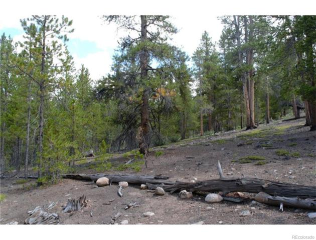 256 Mt Massive Drive, Twin Lakes, CO 81251 (#1782819) :: Bring Home Denver