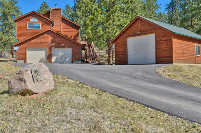 65 Pinto Way, Bailey, CO 80421 (#1783809) :: The Pete Cook Home Group