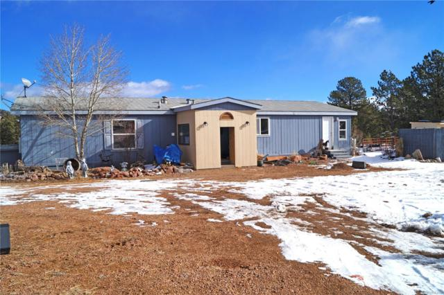 314 Pikes Trail, Guffey, CO 80820 (#1784642) :: Compass Colorado Realty