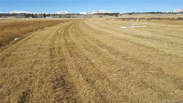 Lot 10 Co Road 18, Fairplay, CO 80440 (MLS #1785823) :: 8z Real Estate