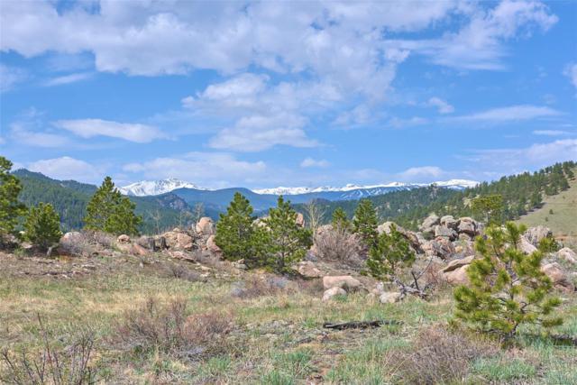 5000 Ridge Rd Drive, Nederland, CO 80466 (#1786468) :: House Hunters Colorado