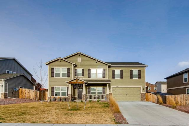 10667 Mcgahan Drive, Colorado Springs, CO 80817 (#1787013) :: The Pete Cook Home Group