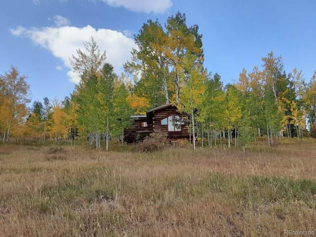 19900 Hoch-Eye Way, Oak Creek, CO 80467 (#1787323) :: The Gilbert Group