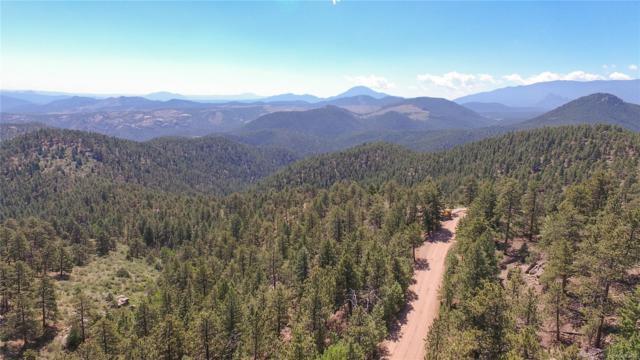 266 Ptarmigan Trail, Bailey, CO 80421 (MLS #1788469) :: 8z Real Estate