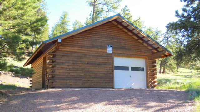 102 Old Kathleen Trail, Guffey, CO 80820 (MLS #1790707) :: 8z Real Estate