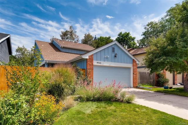 9203 W 87th Place, Arvada, CO 80005 (#1792985) :: The Peak Properties Group