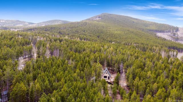 240 Deer Road, Evergreen, CO 80439 (MLS #1793935) :: 8z Real Estate