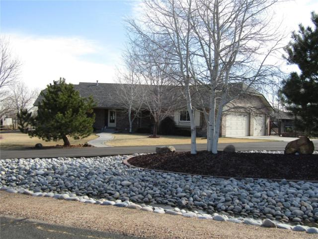 13809 E 133rd Drive, Brighton, CO 80601 (#1799199) :: The Peak Properties Group