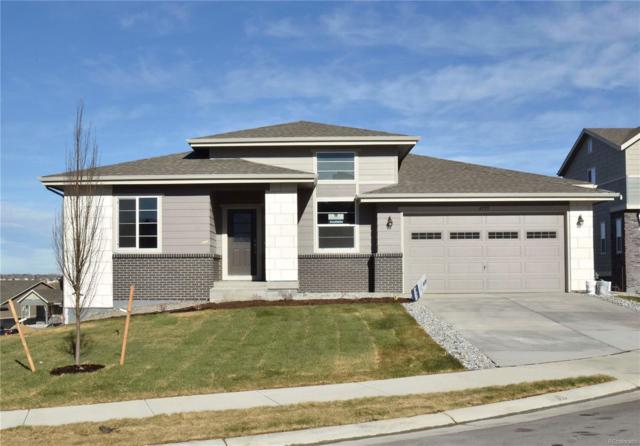 4795 W 108th Place, Westminster, CO 80031 (#1799797) :: Bring Home Denver