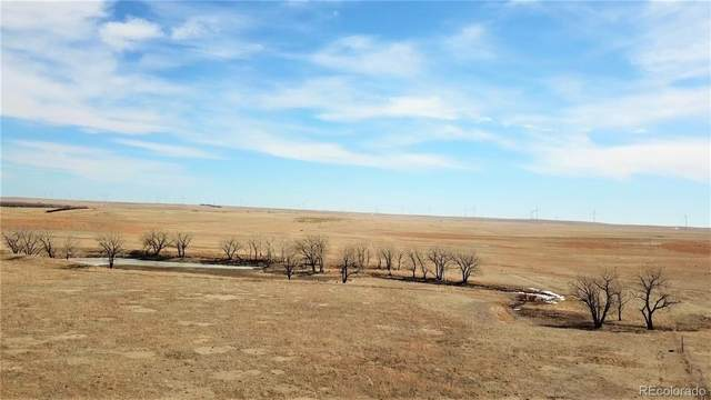 59 +/- Acres - Grassland, Matheson, CO 80830 (#1809091) :: The Brokerage Group